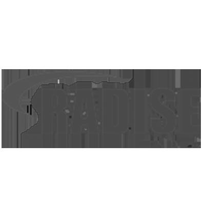 Radise US Magnifez Technologies Inc Dynamics 365 PowerApps development Company US India