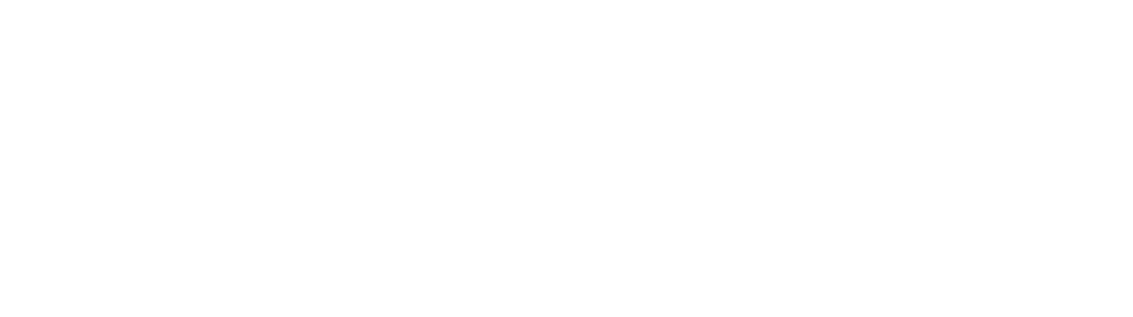 magnifez-technologies-inc-logo-dynamics-365-sevices-company-US-India